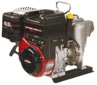 Wet Seal Pump Stainless Steal Briggs 200P6PROSSW
