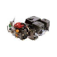Gas Engine-Driven, Medium Pressure, 2 Diaphragm Model: D30HRGI-65, D30HRGI-65E, D30GRGI-65, 1535, D30HRGI